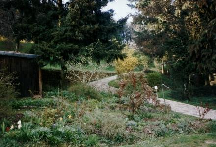 Inside the private garden