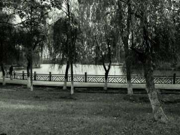 Relaxing at a small man-made lake near my apartment.