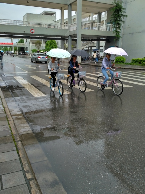 Umbellas in the rain while riding a bike