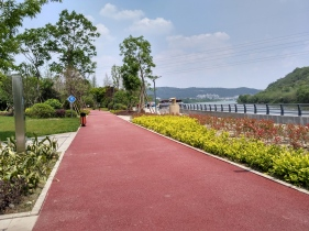 The bike path at a park downtown