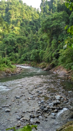 The peaceful scene in Bukit Lawang