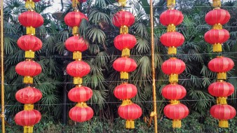 Red lantern decorations during Spring Festival
